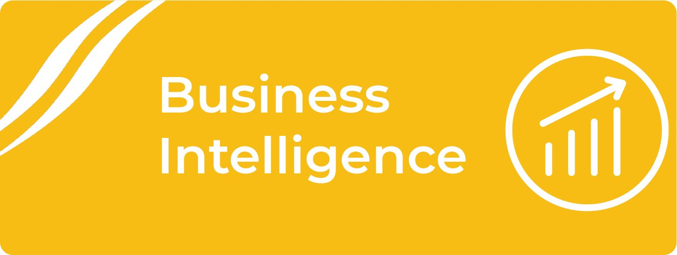 Business Intelligence for Practices